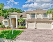 17358 Emerald Chase Drive, Tampa image