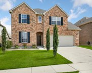 909 Basket Willow Terrace, Fort Worth image