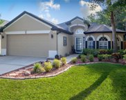 4750 Whispering Wind Avenue, Tampa image