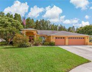 8446 Siamang Court, New Port Richey image