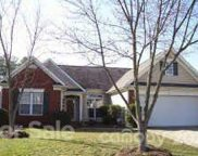 13537 Michael Lynn  Road, Charlotte image