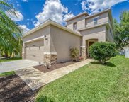 26951 Cotton Key Lane, Wesley Chapel image
