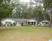 4503 Willow Bend Road, Decatur image
