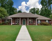 16885 Woodhaven Drive, Athens image