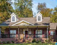 5901 Miles Spring Rd, Pinson image
