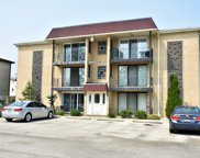8854 N Grace Avenue Unit #2S, Niles image