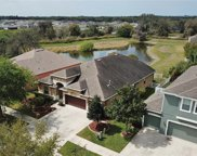10123 Caraway Spice Avenue, Riverview image