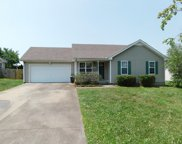 3853 Roscommon Way, Clarksville image