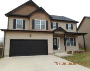 1287 EAGLES VIEW DR, Clarksville image
