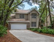 13135 Greengage Lane, Tampa image