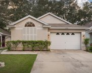 14946 Deer Meadow Drive, Lutz image