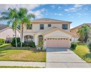 10115 Vista Pointe Drive, Tampa image