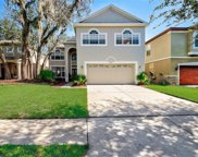 7324 Brightwater Oaks Drive, Tampa image