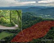 91 Green Mountain  Lane, Fletcher image