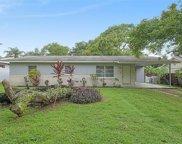 10104 N Oakleaf Avenue, Tampa image