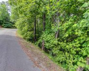 Lot 205 Easy St, Sevierville image