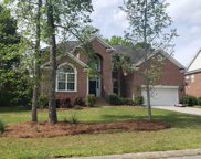 207 Match Point Drive, Chapin image