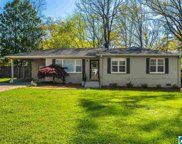 313 Redwood Street, Irondale image