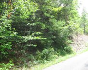 Black Gum Gap Road Rd, Gatlinburg image