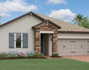 16301 Hyde Manor Drive, Tampa image