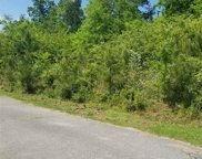 5402 Pine Rd Unit Lot 15, Clay image