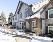 2732 Weeping Willow Drive Unit B, Lisle image