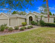 16141 Colchester Palms Drive, Tampa image
