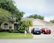 9204 Waterbird Drive, Riverview image