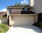 4226 Hartwood Lane Unit 4226, Tampa image