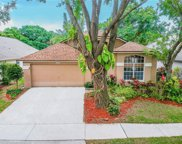 12322 Glenfield Avenue, Tampa image