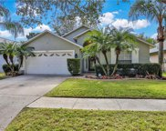 7121 Colony Pointe Drive, Riverview image