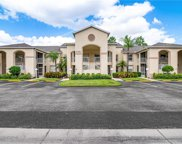 21361 Lancaster Run Unit 222, Estero image