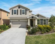 10514 Avian Forrest Drive, Riverview image