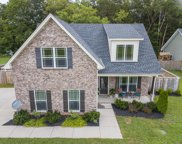 200 Winding Branch Ct, Christiana image