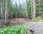 0 Lot 3 Mountain Home (Lot 3) Rd, Snoqualmie Pass image
