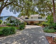 4603 Apple Ridge Lane, Tampa image