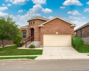 1326 Crow Ct, San Antonio image