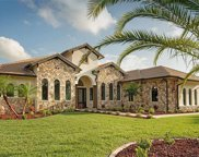330 Two Lakes Lane, Eustis image