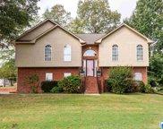 9 Laurel Oak Ln, Odenville image