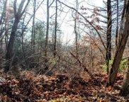 11 Saumur, Bellingham image