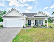 332 Pickney Ct., Conway image