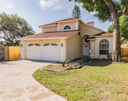 8725 Coral Dawn Court, Temple Terrace image