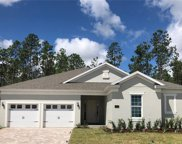 16238 Misty Hills Avenue, Winter Garden image