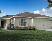 11677 Stone Pine Street, Riverview image