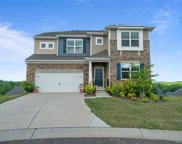 2036  Marble Rock Court, Fort Mill image