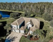 19320 Yellow Clover Drive, Tampa image