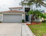 6551 Blue Grosbeak Circle, Lakewood Ranch image