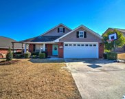 15826 Mary Shell Dr, Harvest image