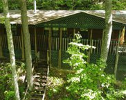 31 Serendipity  Trail, Maggie Valley image