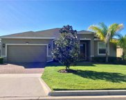3535 Litchfield Court, Clermont image